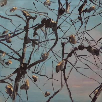 Vine stock, oil on canvas, 80x80cm, 2017